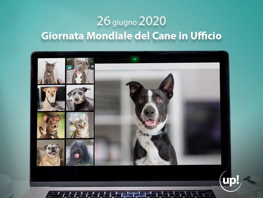 Giornata mondiale dei cani in ufficio